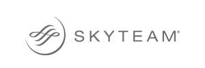 experience_skyteam_300x100
